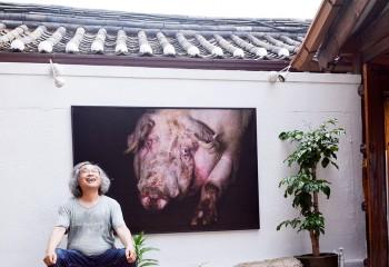 """취미가 직업이 된 사진작가 박찬원의 꿈, """"내 작품이 국립현대미술관에 소장되는 것이 목표다"""""""